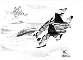 Su-30 vs. F-22A by redguard