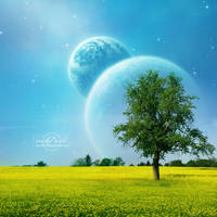 +Spring Dream+ by moroka323