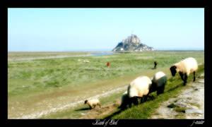 Lamb of God by J-Master