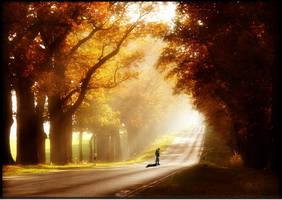 Autumn Sun - Photo Maipulation by PSNick