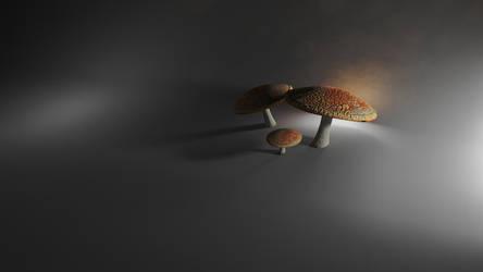 Mushrooms by CatsGoPurr