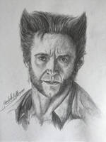 Wolverine- Hugh Jackman by ElizabethHolmes