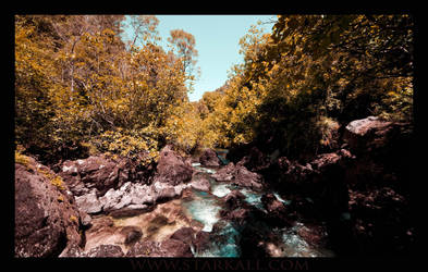 The holy source of the Sorgue by Starkall