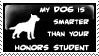 My Dog v. Your Honors Student by stamps-club
