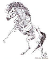 Anatomy of horse by Demondes