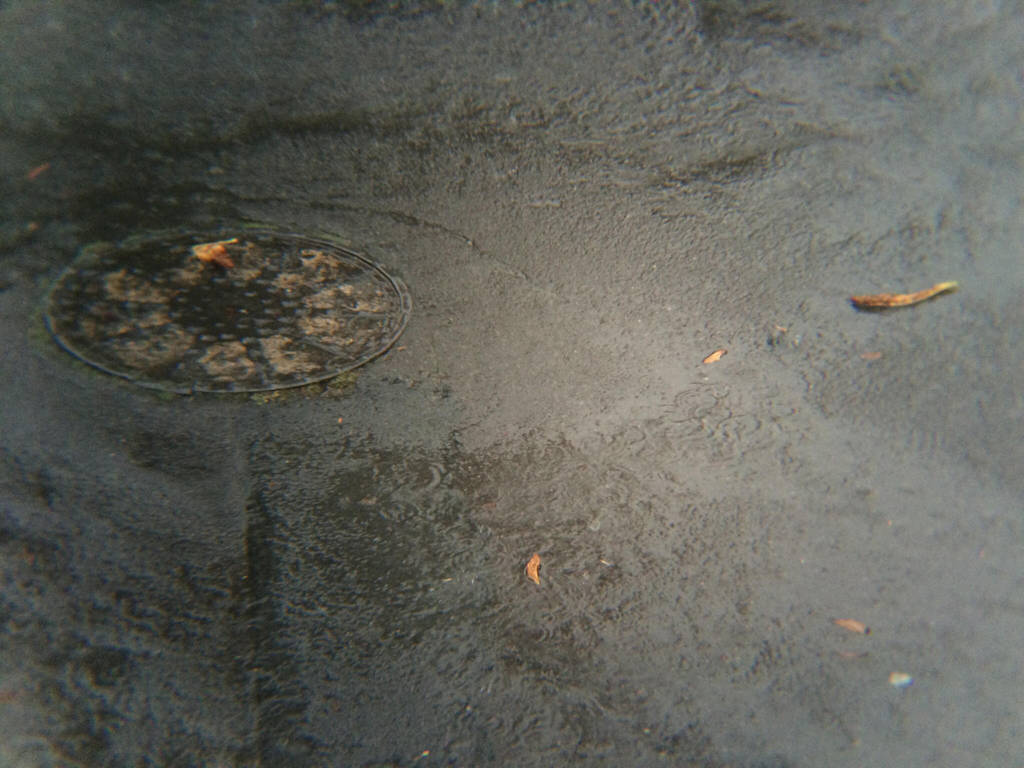 Rainy Day by sgrahamUK