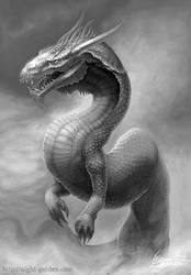 Hot drake by HiromuSugawara