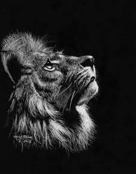 Lion by marmicminipark