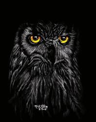 Owl by marmicminipark