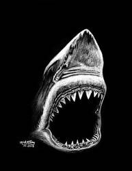 Shark by marmicminipark