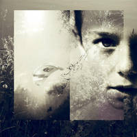 ..fragile dreams.. by let-it-di