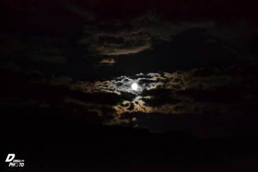 Moon by Denisa66