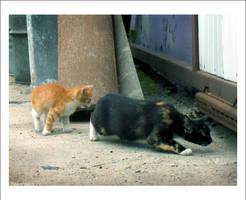 feeding the Homeless no.1 by nenneko