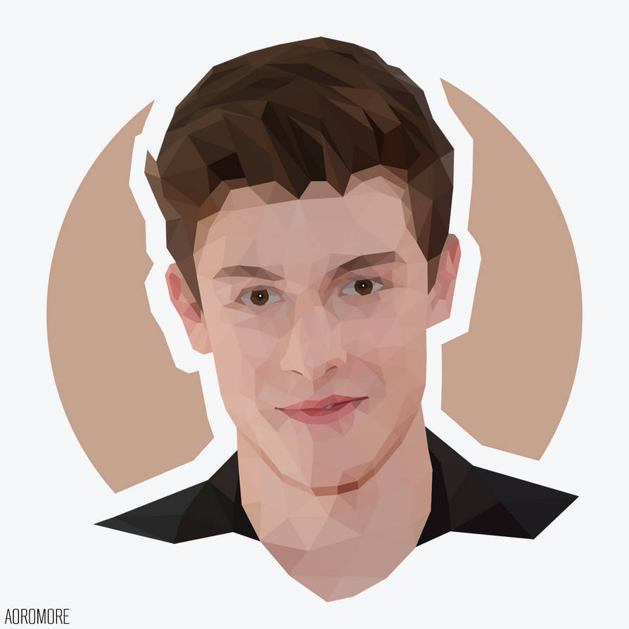Shawn Mendes by aoromore