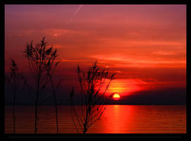 Sunset No. 993804882 by tendence