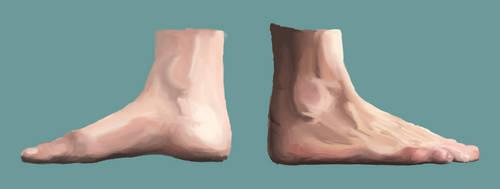 AnatomyTWO by olibrine