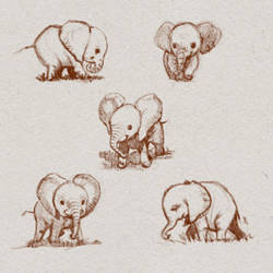 Baby Elephants Character Sheet by ArtofOkan