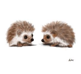 Little hedgehogs by ArtofOkan