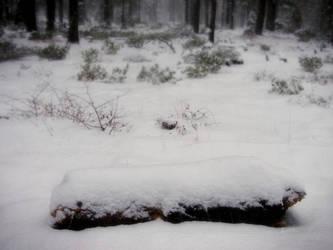 Snowy Log by RavenMoonDesigns