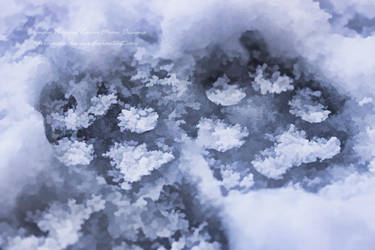 Frosted Footprints by RavenMoonDesigns