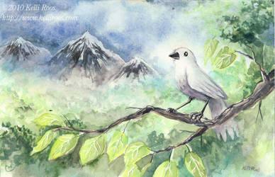 Grey Bird by KelliRoos
