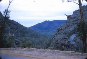 Australian bush by otherunicorn-stock