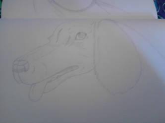 Dog.. by o0Eline0o