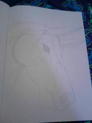 Horse by o0Eline0o