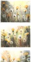 Summer of dandelion by nibybiel