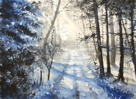 Winter forest by nibybiel