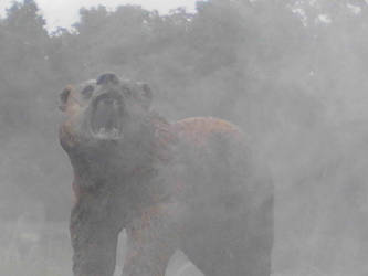 Ze Bear by TGang28
