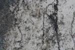 Texture11 by LindsayDole