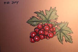 #23 Juicy - Grapes by Frakkle-art