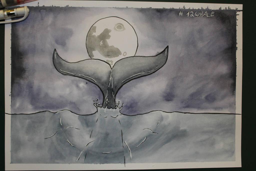 12 Whale by Frakkle-art