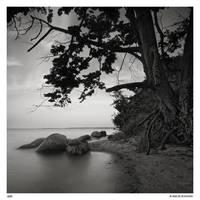 Wild shore by Maciej-Koniuszy