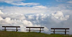 Waiting for Eternity by motzhoeld
