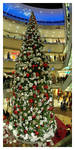 Christmas Trees - Part 2 by janey-in-a-bottle