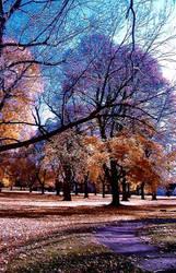 The happenings of fall three by AutoRocket