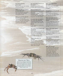 EDN* B2: Ocean Facts (Part 2) by CrashAndSpyroFan