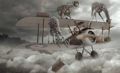 Luggage's aviator by LINGDUMSTUDOG