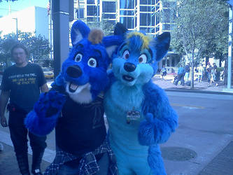 Anthrocon 2014: ??? 2 Blue Canines by murkrowzy