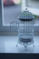 Miniature Birdcage Stock by Skitsofrenika-Stock