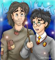 Sirius and Harry by irishgirl982