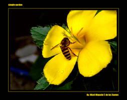 Simple Garden 3 by neocatastrophic