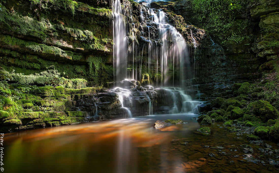 The beauty that is Scaleber Force. by Pistolpete2007