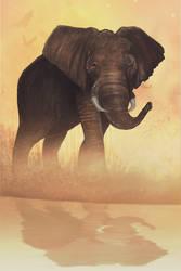 Elephant by Zolfyer