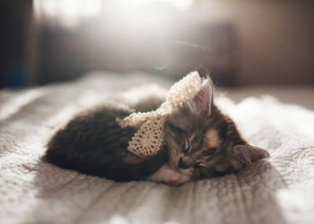 Marceline by kittynn