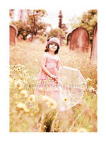 Spring Beauty by kittynn