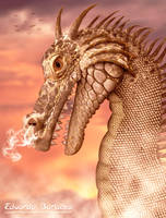 Dragon by Eduardobass