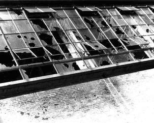 Cracked Windows by AdamskiPhoto